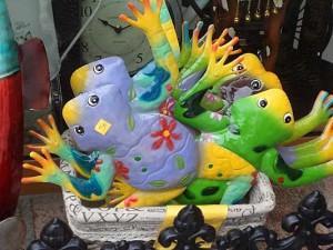 frogs_frigilana