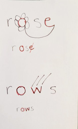 rose rows homophones picture card