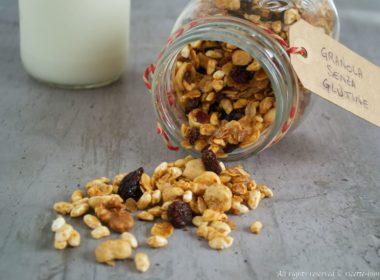 Granola senza glutine Bimby