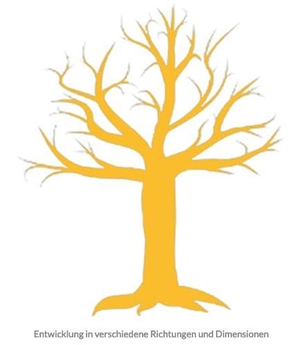 TG Baummodell Entwicklung in verschiedene Richtungen