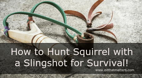 hunting squirrels with a slingshot
