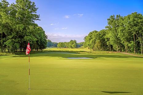 grove golf course gallery