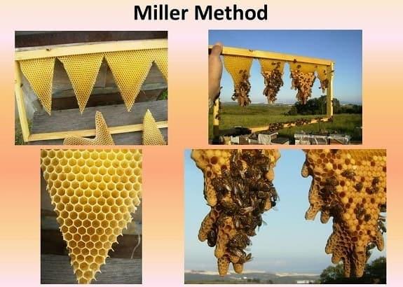 Miller Method Collage