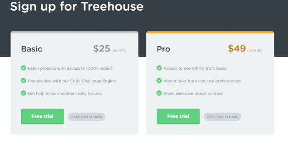 Review of Treehouse learning platform pricing.