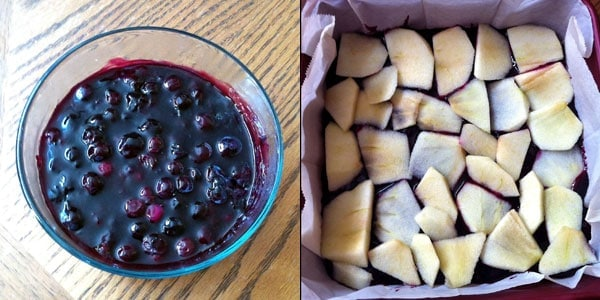 Blueberry Sauce and Apples