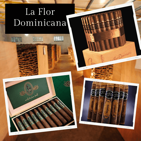 Meiga - La Flor Dominicana - cigares