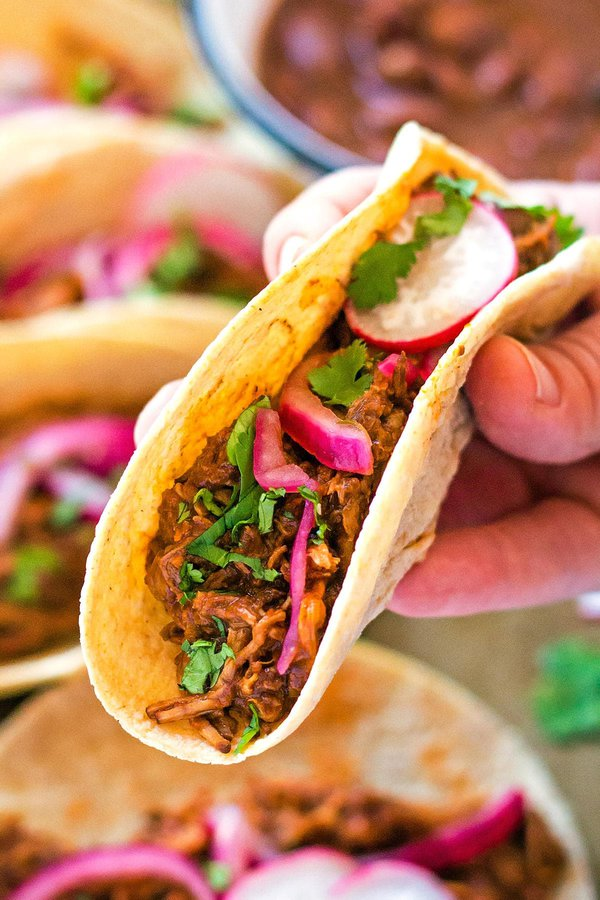 Hand holding Instant Pot Pulled Pork Taco