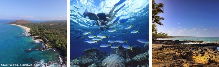 Makena snorkeling