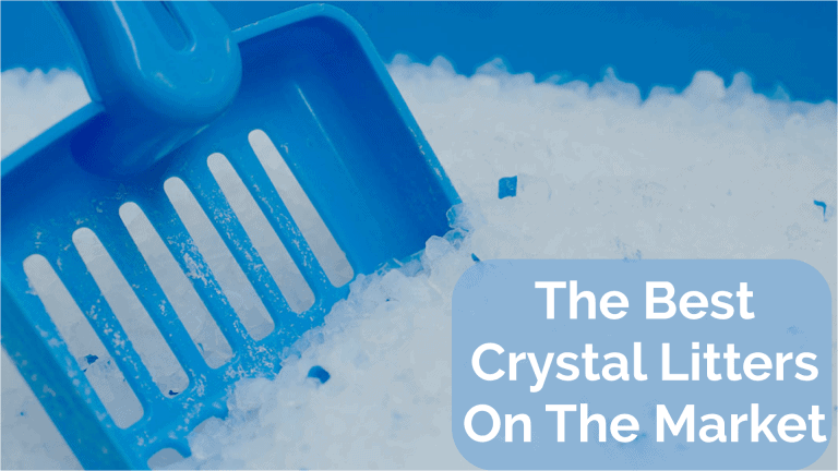 Best Crystal Litters Cover Picture