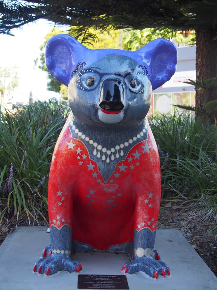Koala Trail Port Macquarie