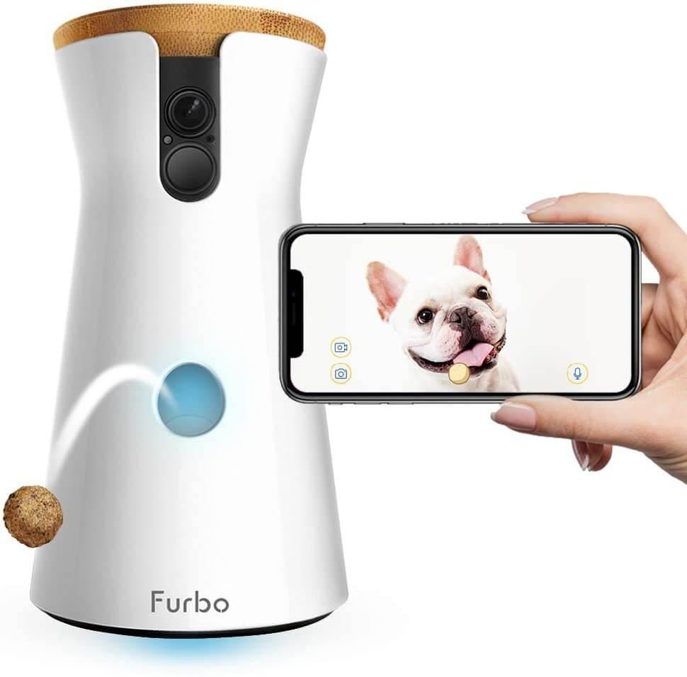 furbo caméra chien et chat
