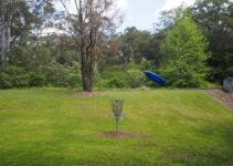 Bring your Frisbees to Jesmond Park to play Disc Golf