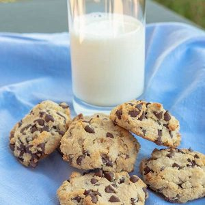Chocolate Chip Walnut Cookie {Gluten-Free, Grain-Free, Low-Carb}