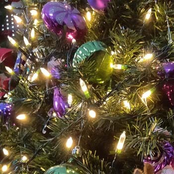 5: MAGOTAN Christmas Lights Outdoor String Lights