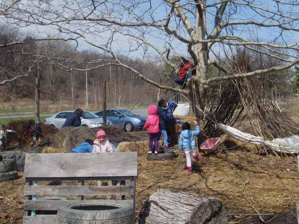 Kids climbing trees and building things at the ithaca children's garden in the finger lakes