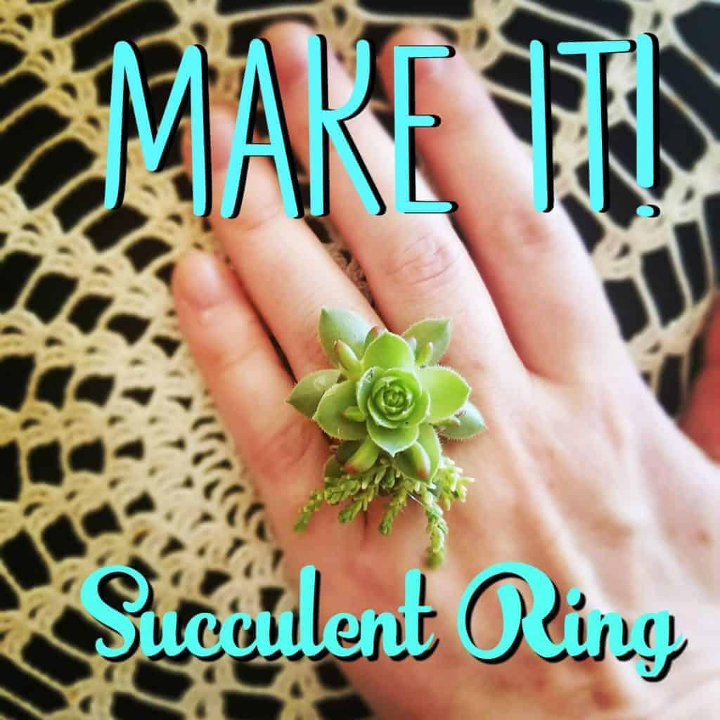 succulent ring 4
