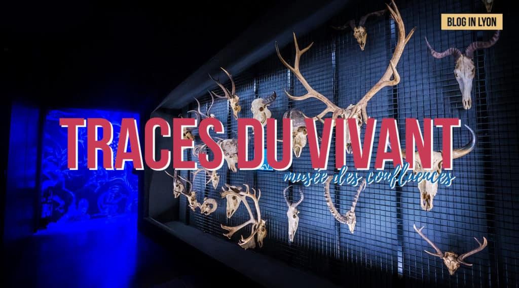 Exposition Traces du vivant - Musée des Confluences   Blog In Lyon