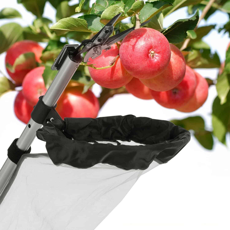 Waldbeck Telescopic Apple Picker
