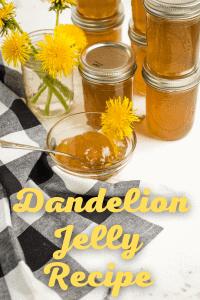 Dandelion jam recipe.