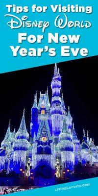 Disney World Magic Kingdom New Years Eve Tips