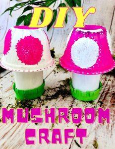 diy mushroom craft pin image