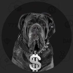 BigDollar.com free spins, free bonus, promotion, free chip code