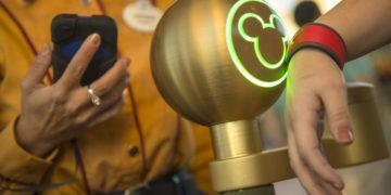 A walt disney world resort guest uses a magicband to enter magic kingdom theme park in lake buena vista, fla. Guests also can use magicbands to enter their disney resort hotel room, buy food and merchandise, enter walt disney world resort theme parks and water parks, access their selected fastpass+ experiences and connect to disney's photopass. Magicbands are part of the new mymagic+, which has the ability to connect nearly all aspects of the guest vacation experience at walt disney world resort.