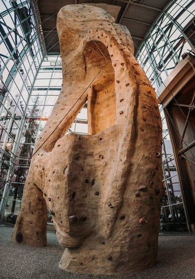 The 65-foot, glass-enclosed climbing wall at rei in seattle.