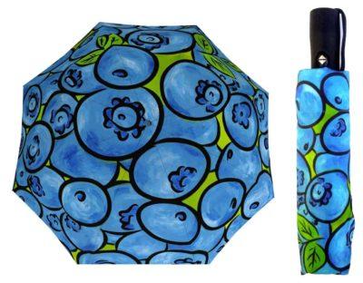 blueberries umbrella