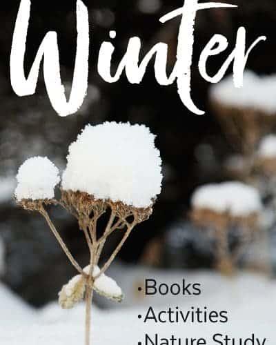 Fun Winter Activities for your Homeschool