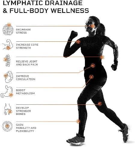 whole body vibration machine