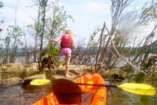 Pausing our kayaks to explore on the susquehanna