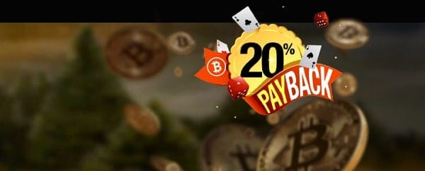 20% payback