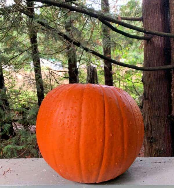 pumpkins sitting on a railing