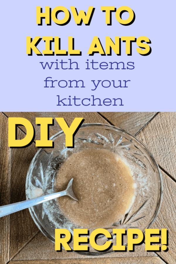 how to kill ants with borax