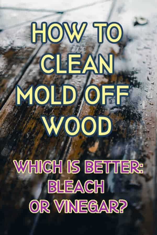 how to clean mold off  wood with bleach or vinegar graphic