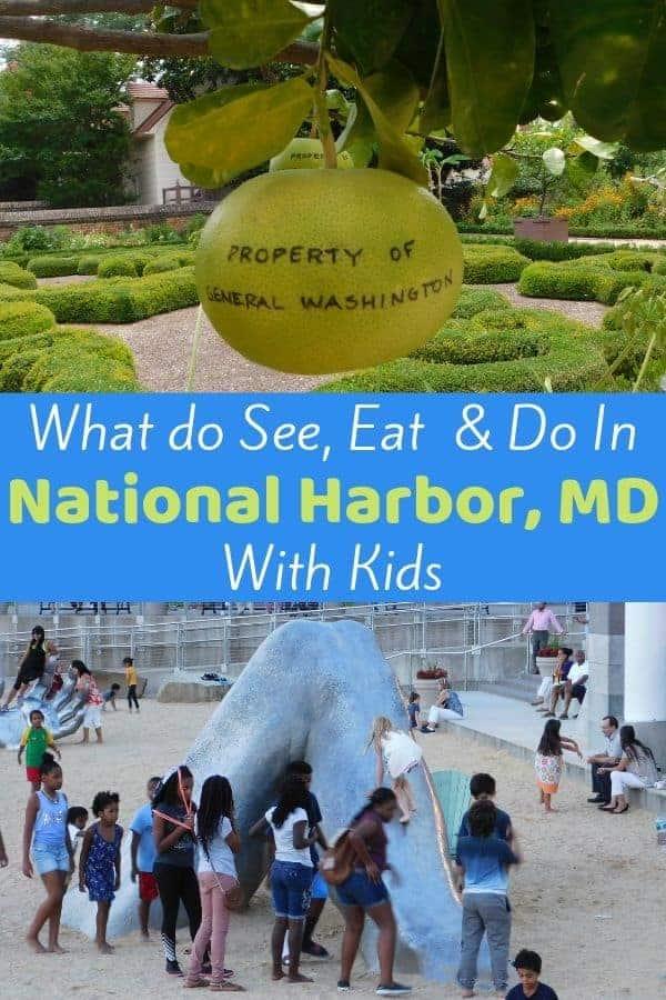 National harbor kids