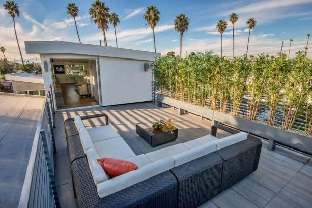 living bamboo plants for deck railing screen