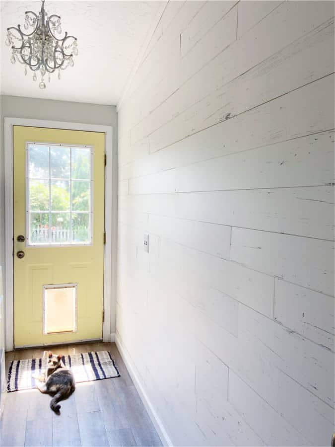 Room with white wall planks and cat laying in front of a yellow door.