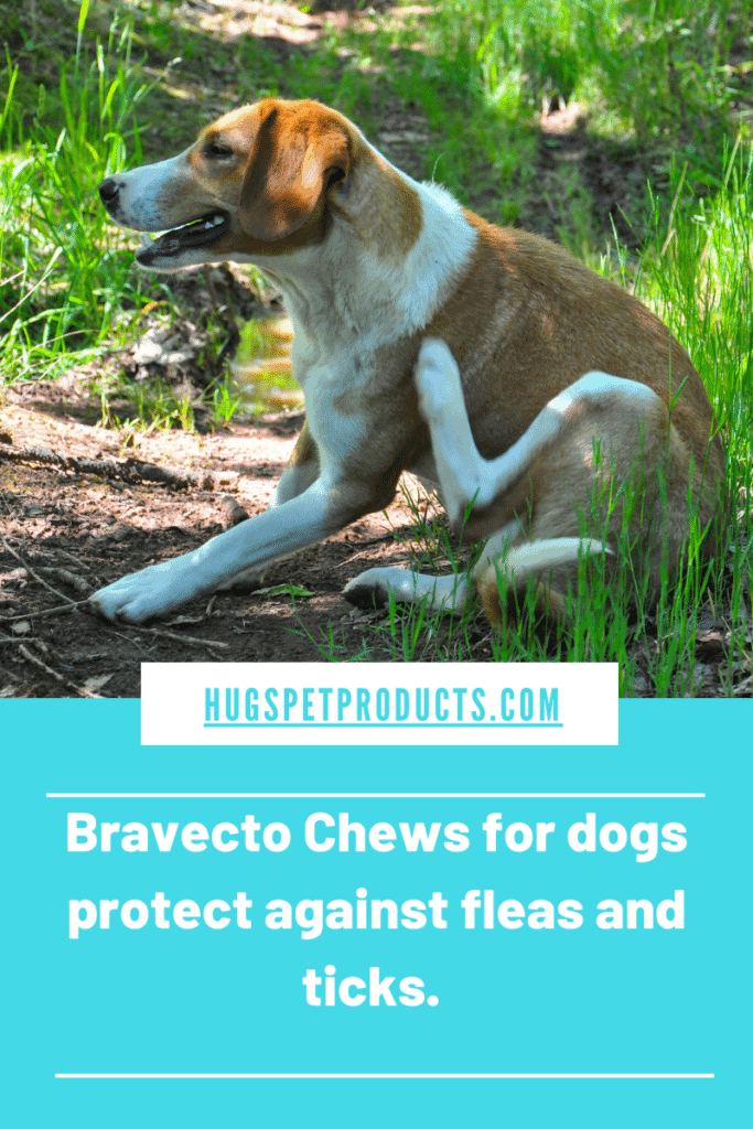 Bravecto Chews for Dogs protect against fleas and ticks