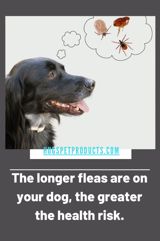 Diatomaceous earth takes forever to get rid of fleas