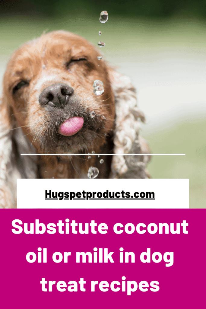 Substitute coconut oil or milk in dog treat recipes