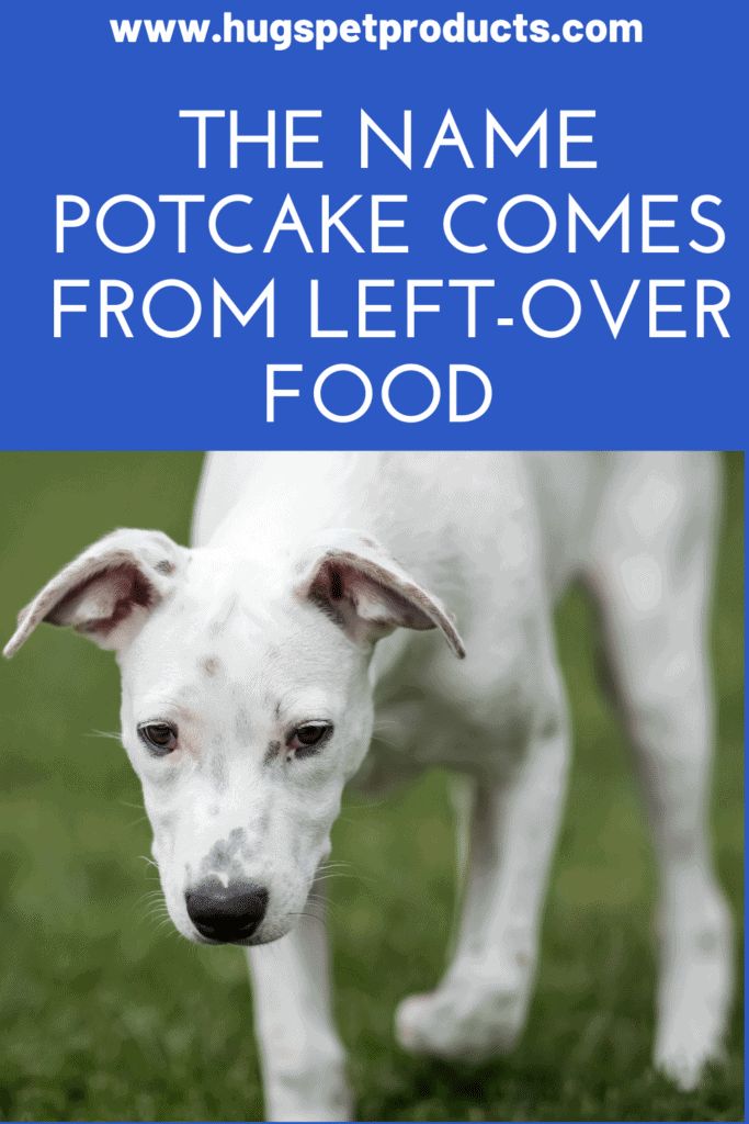 potcakes got their names from left-over rice and peas