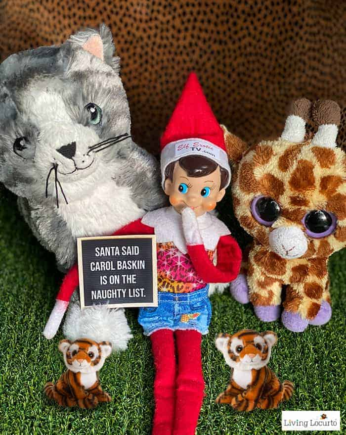 9 Hilarious Stuck at Home Elf Letter Board Signs - Tiger King Elf Exotic - Living Locurto
