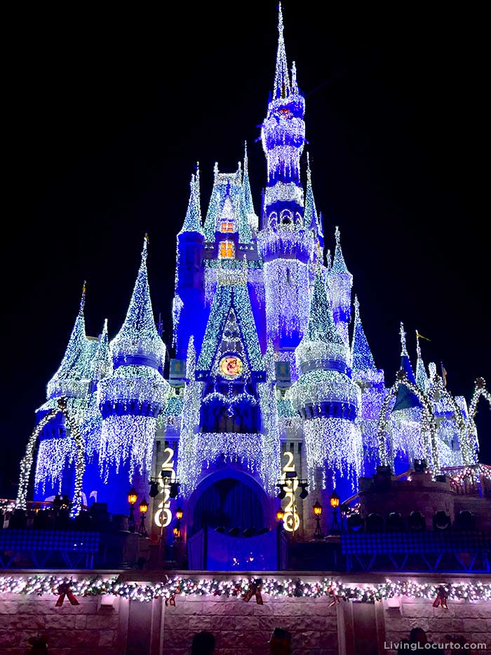Tips for visiting Disney World's Magic Kingdom on New Year's Eve.