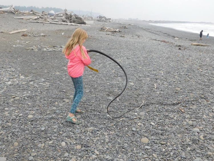 A tween plays with a long piece of seaweed on rialto beach in washington.