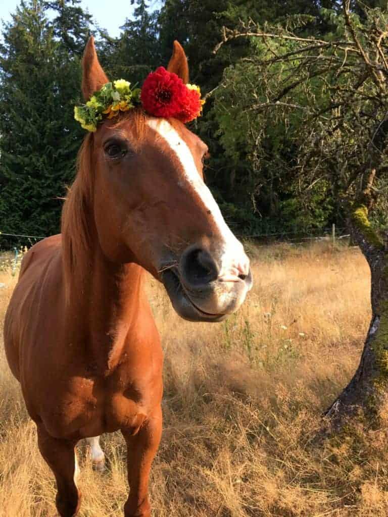 flower crown tutorial 3