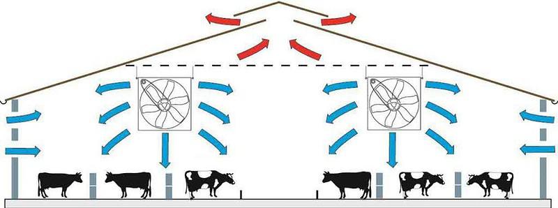 livestock building ventilation system