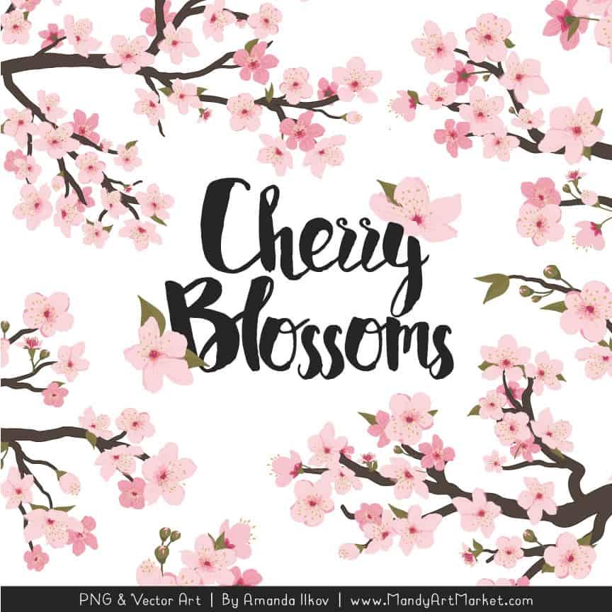 Free Cherry Blossom Clipart
