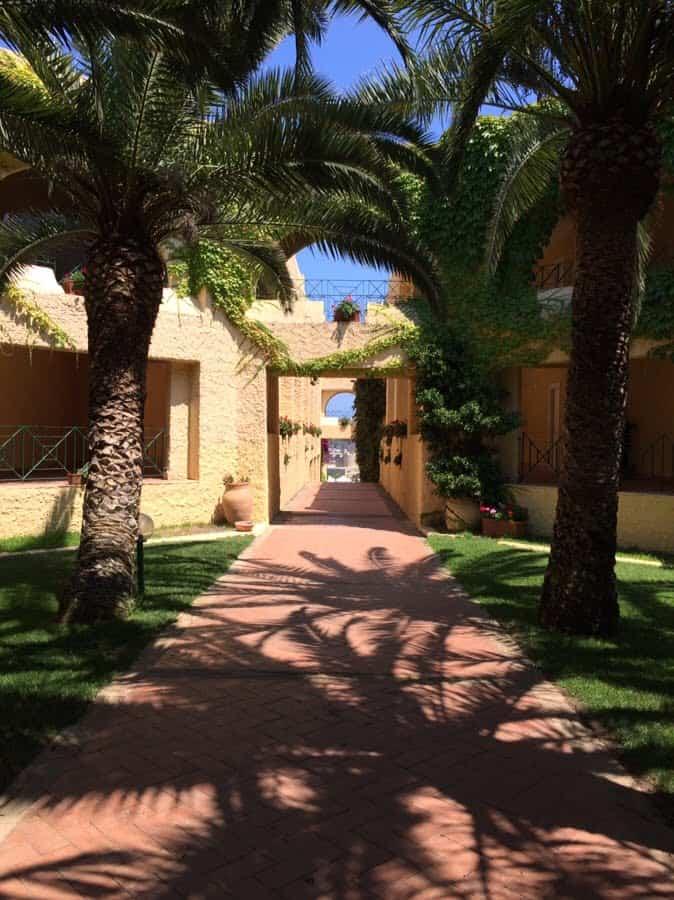 photo numérique allée de l'hôtel bordée de palmiers